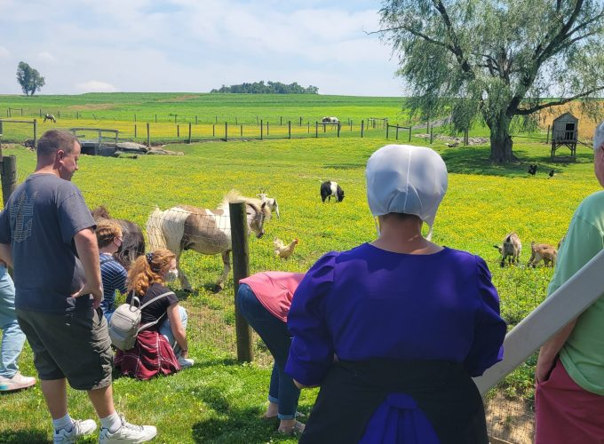 Lokal Experiences Farm Guests